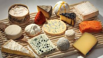 Käseplattegroß